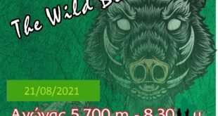 1st Rodochori Night Trail Αφίσα 1st boar